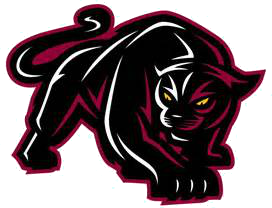Albany College of Pharmacy Panthers Logo