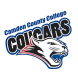 Camden County College Opposing Team Logo