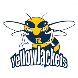 Rochester Community Yellowjackets Opposing Team Logo