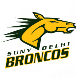 SUNY Delhi Community College Opposing Team Logo